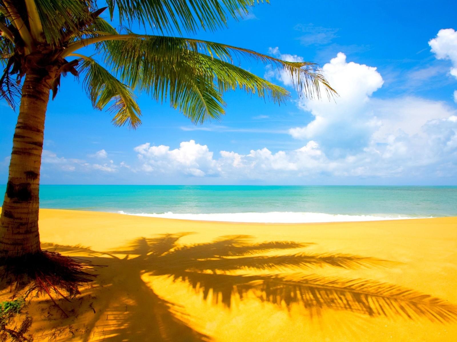 Море пейзаж берег горизонт
